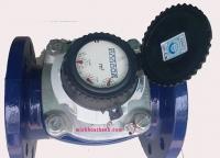 Đồng hồ đo nước Sensus Mặt bích